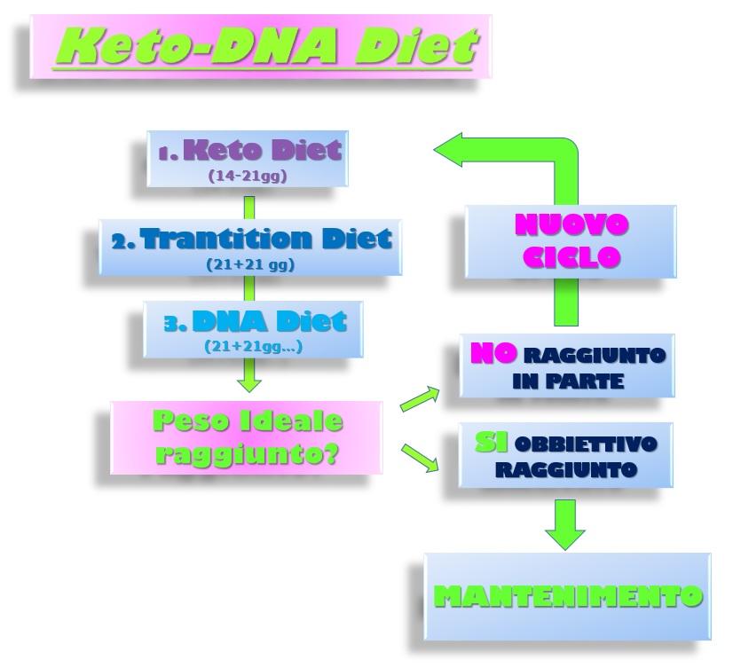 esempi di programmi dietetici a basso contenuto calorico
